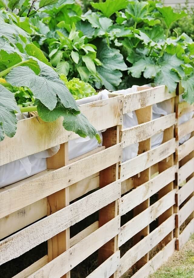 Vegetable garden planter boxes - Pallet Vegetables Garden And Fence Safety 99 Pallets