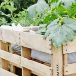 Pallet Vegetables Garden and Safety Fence