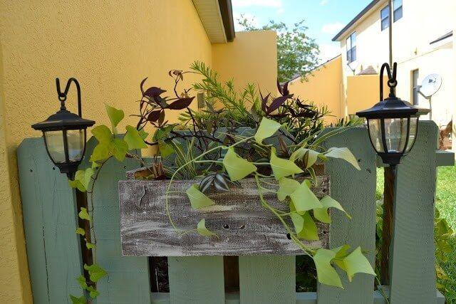 Pallet for Garden