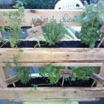 DIY Planter From Wooden Pallets