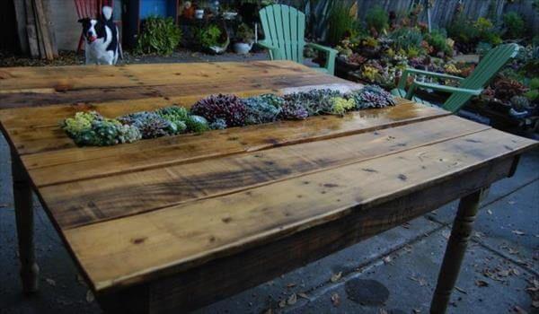 DIY Pallet Succulent Table
