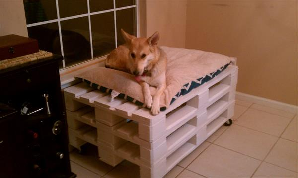 reclaimed pallet dog bed