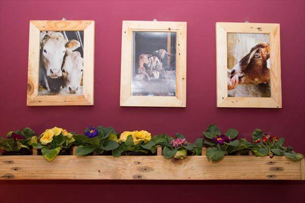 reclaimed pallet wood picture frames and shelf