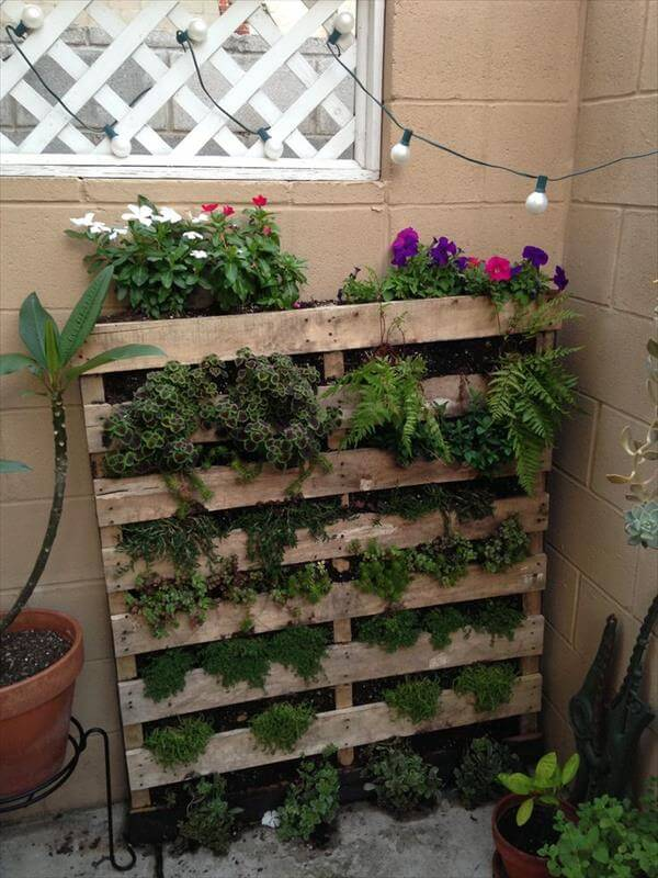 regained pallet vertical garden