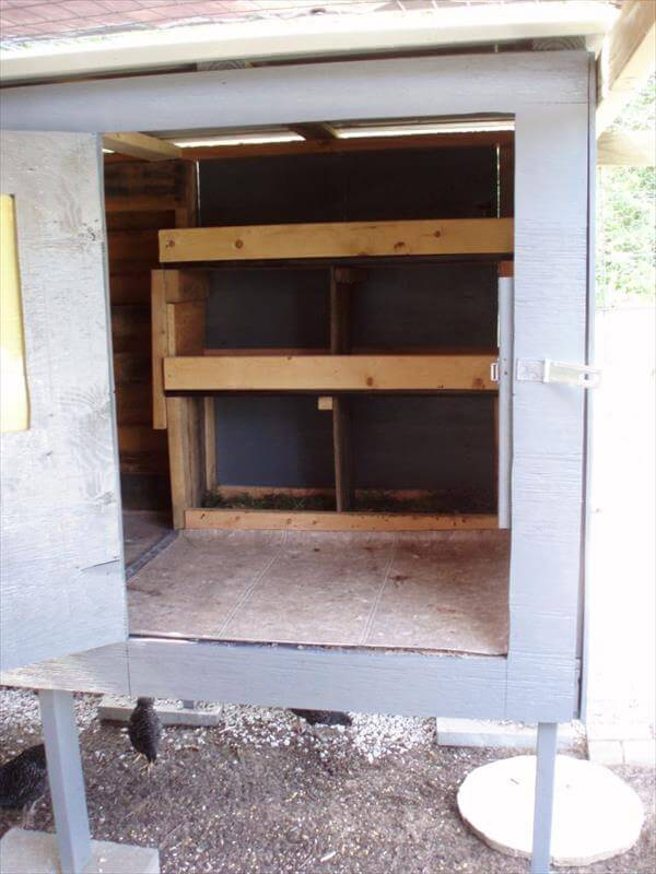 pallet chicken coop mains access