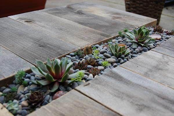 Diy pallet succulent table tutorial 99 pallets for Pallet succulent garden