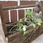 Herb Pot Planter Box