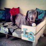 11 DIY Pallet Dog Bed Ideas