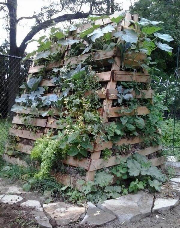 garden bed out of pallets