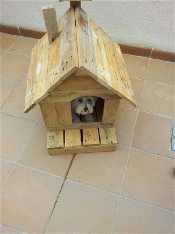 dog house with pallet wood