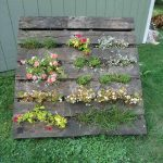 Build a Pallet Vertical Garden