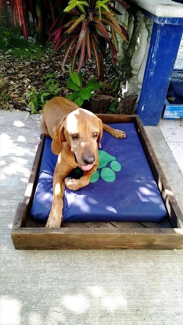 upcycled pallet pet bed with cushion