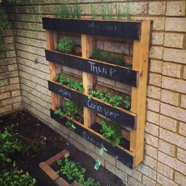 Diy pallet vertical herb garden hanging planter for Vertical pallet garden