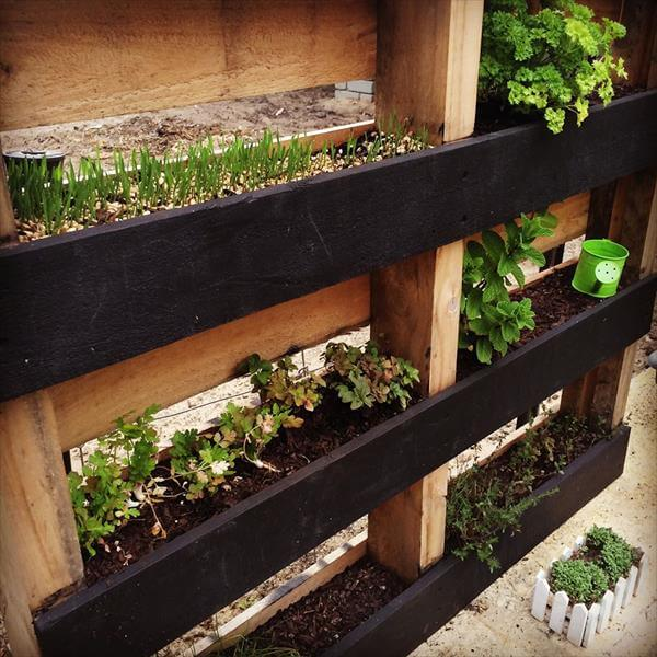 Diy pallet vertical herb garden hanging planter 99 pallets for Vertical pallet garden