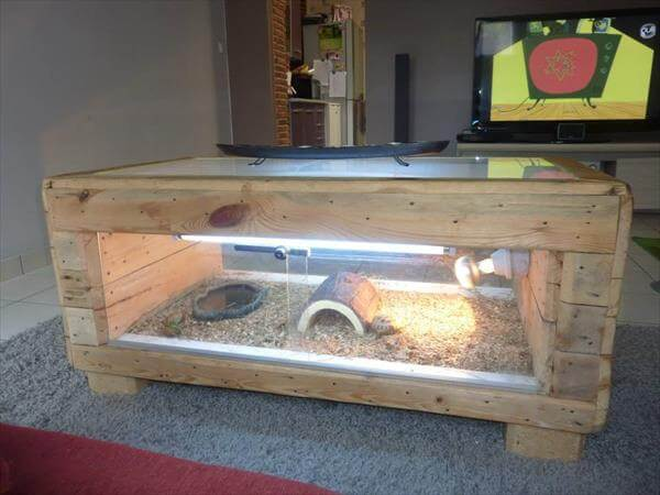 DIY Pallet Table Basse Terrarium : 99 Pallets