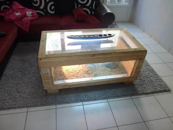 reclaimed pallet table basse terrarium - DIY Pallet Table Basse Terrarium 99 Pallets