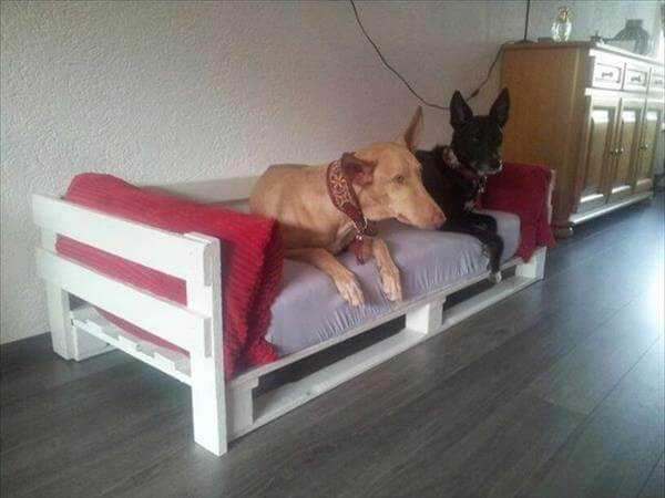 shabby chic pallet dog bed