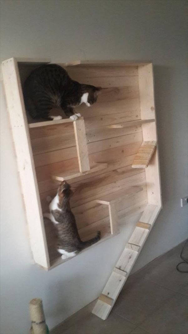 Reclaimed Pallet Cat Playhouse | 99 Pallets