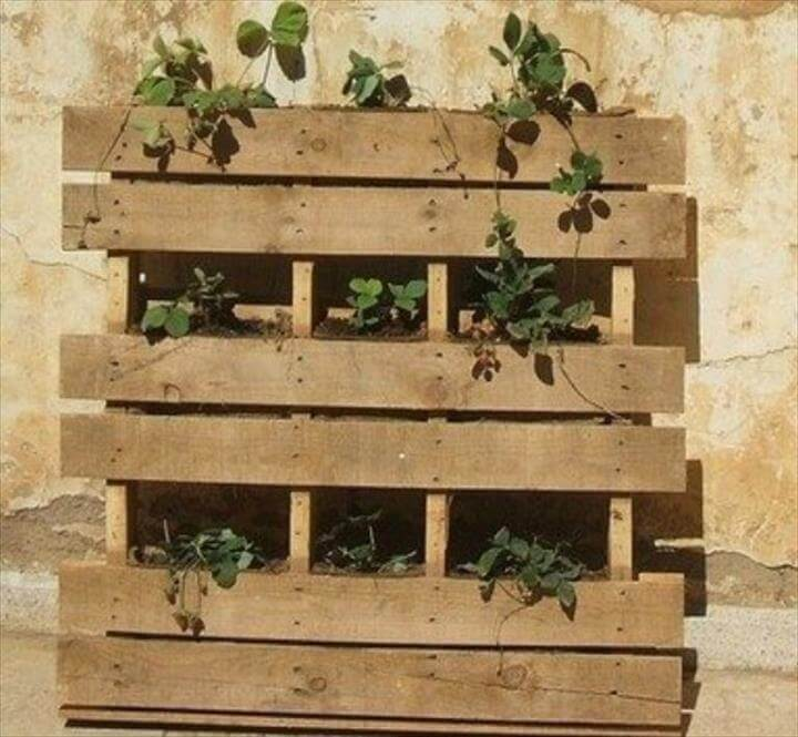 reclaimed pallet vertical herb garden