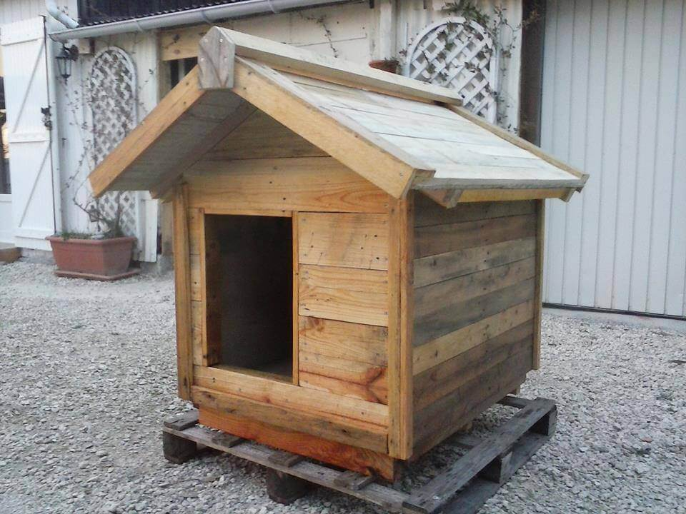 handmade pallet doghouse with chevron roof