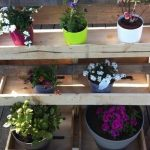 Pallet Vertical Garden with Pots
