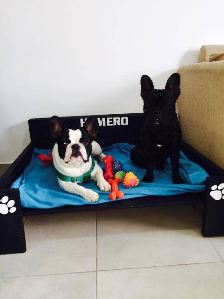 Reclaimed pallet dog beds