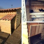 Pallet Chicken Coop – Easy to Do with Pallets