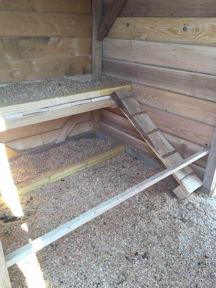 Pallet chicken coop easy to do with pallets for Chicken coop interior designs