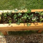 Planter Boxes from Pallets