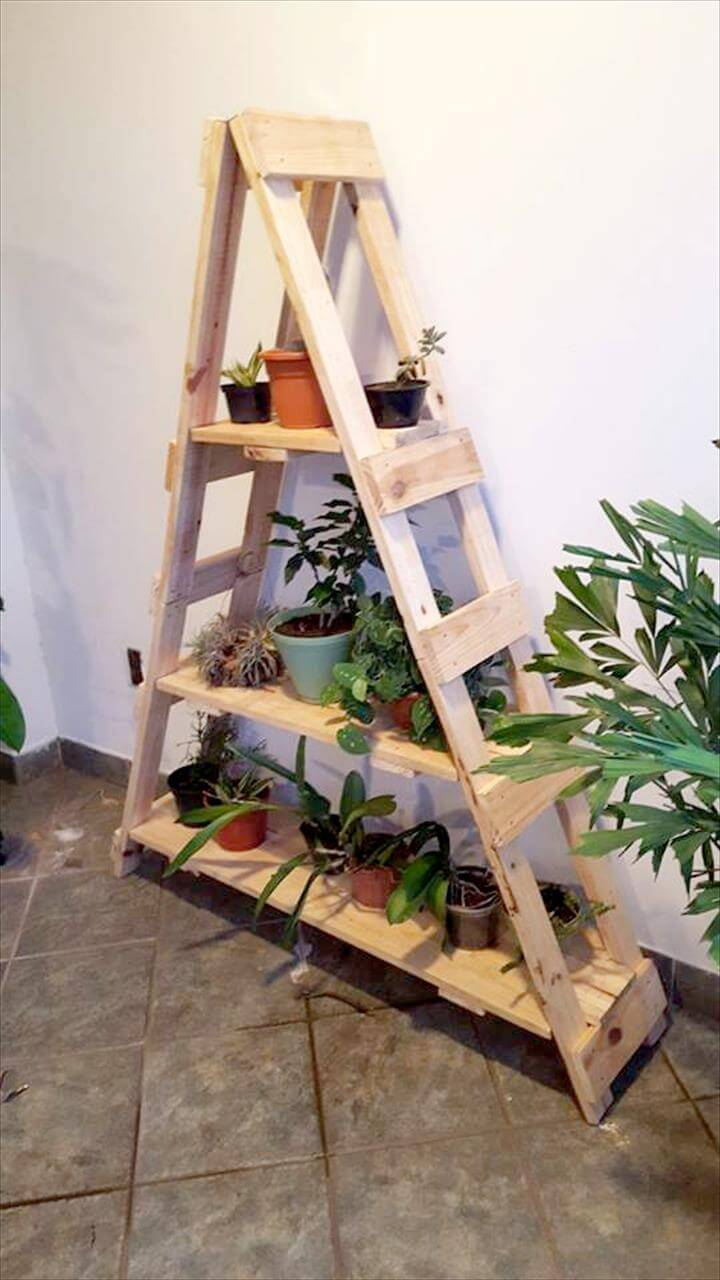 Recycled pallet ladder shelf