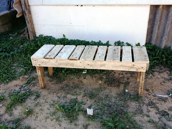 rustic wooden pallet bench