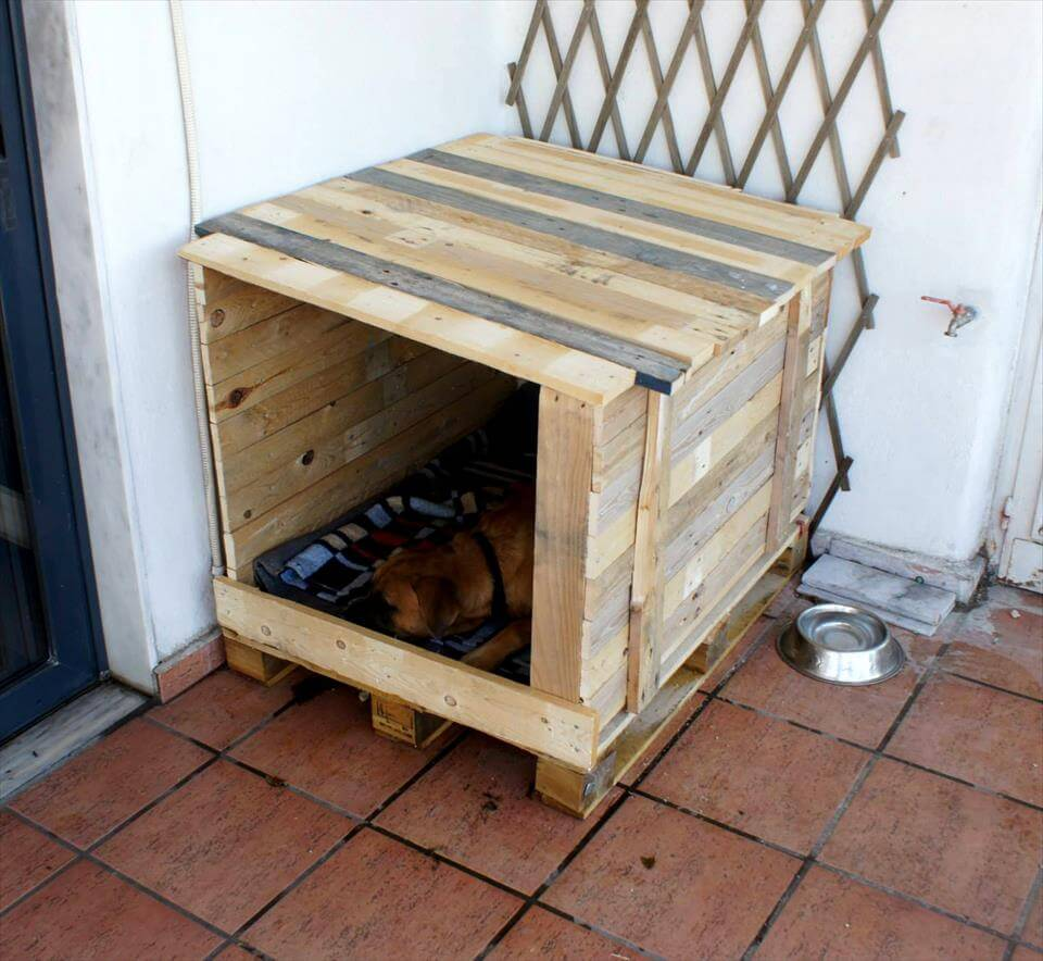 Rustic pallet made dog house